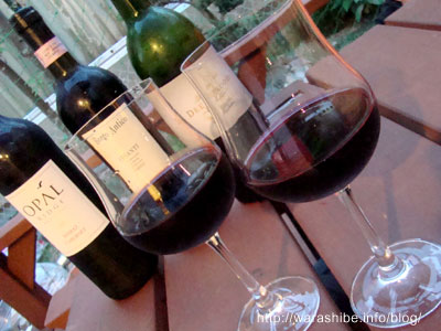 ピーロートワイン 初回限定トライアルセット