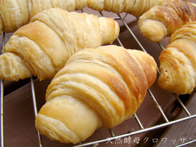 天然酵母パン (クロワッサン)