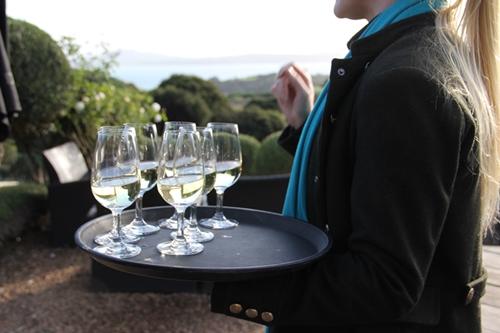 ワイヘキ島でワインテイスティング