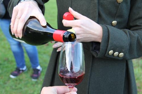 ワイナリーで赤ワインを試飲