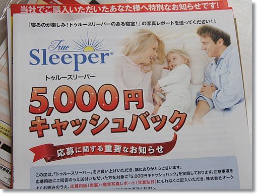 5000円キャッシュバックのパンフレット