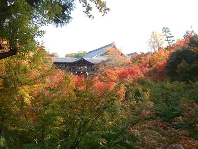 東福寺の紅葉 【京都旅行記2】