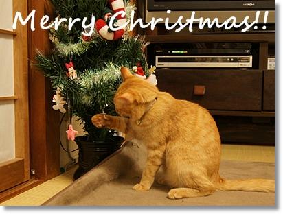 メリークリスマス! 2011