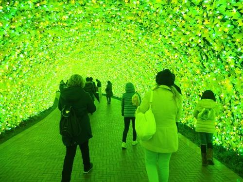なばなの里 光のトンネル「お花畑」