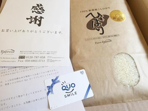 【お試し3合】100円(全国送料無料) 特別米 新潟産こしひかり ひばり