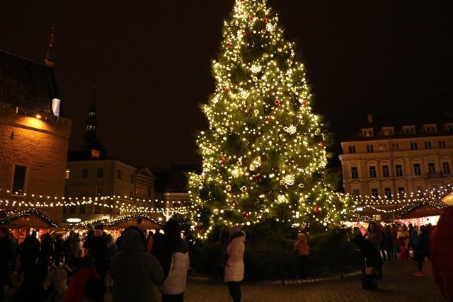 タリンのクリスマスマーケットのクリスマスツリー