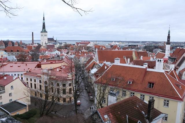 エストニア タリン旧市街 トーンペアからの景色