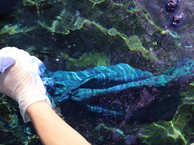藍染め 地下水ですすぐ