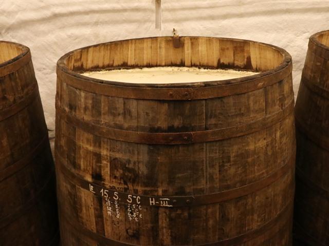 下面発酵させているビールの大樽