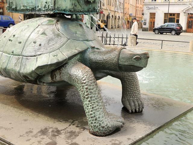 ホルニー広場 亀の像