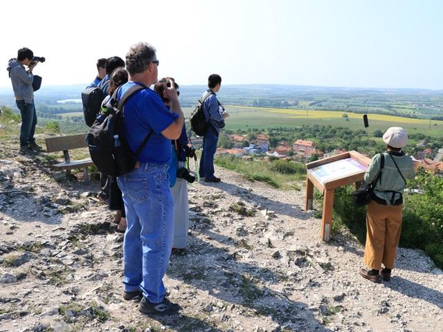 ミクロフの丘の頂上