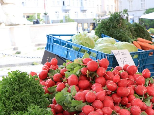 ブルノ 青果市場 キャベツ市場広場