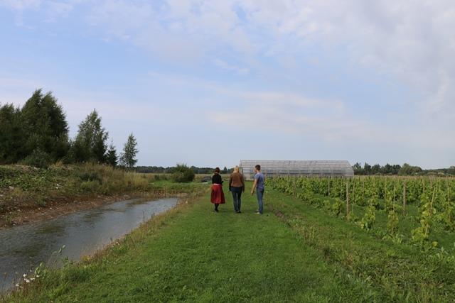 エストニアのトリ・ヨエスー・サイダー&ワイン農場(Tori Jõesuu Cider and Wine Farm)