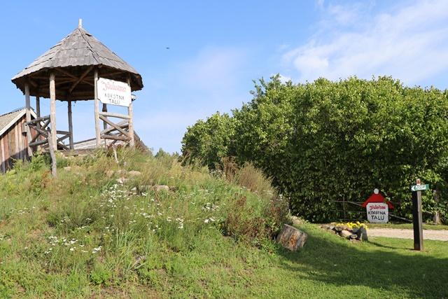 サンタクロースを訪ねて、エストニアのサンタの煙突村へ