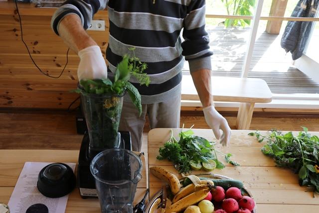 アヴアティニ薬用植物展示園の「緑のカクテル」