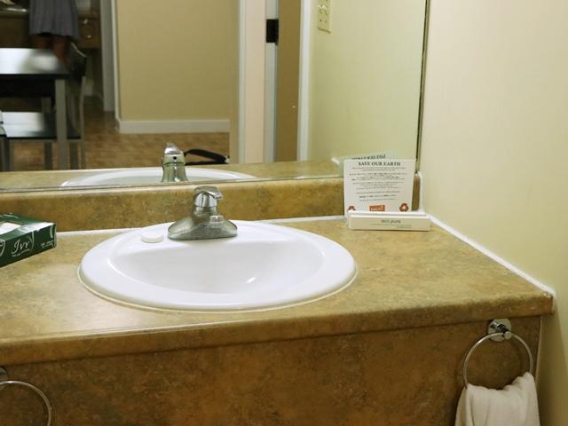 ガーデンヴィラホテルの洗面台