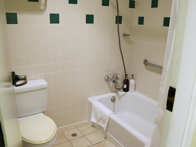 ガーデン ヴィラ ホテルのスタジオAのバストイレ