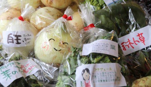 農家・漁師から直接野菜や魚を買える「ポケットマルシェ」で、淡路島の新玉ねぎ入り春野菜セットを注文してみた