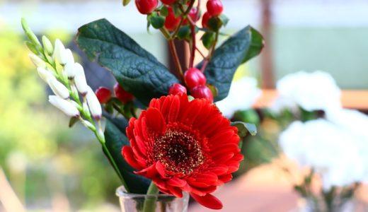 家のポストに届くお花の定期便 Bloomee LIFE(ブルーミーライフ) 500円から手軽に始めるお花のある暮らし