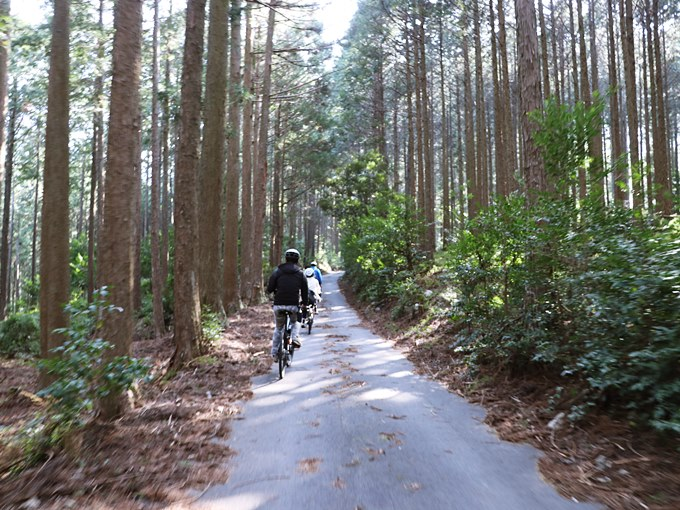 森の中をサイクリング